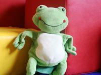 Ein Plüsch-Frosch